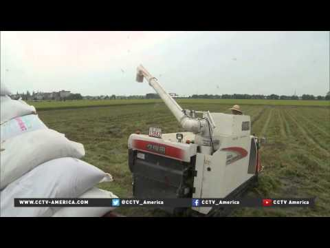 Agricultural tech in China beats the odds