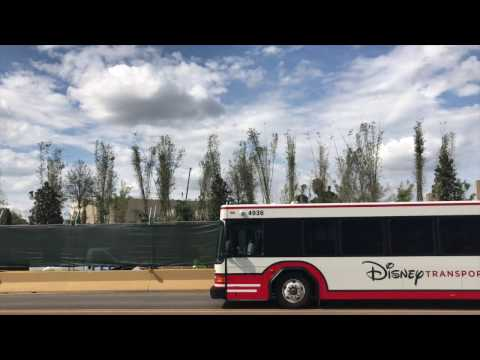 Latest Progress on Pandora - The World of AVATAR and New Bus Loop at Disney's Animal Kingdom