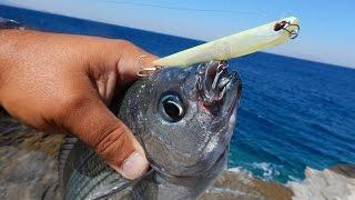 Рибалка з дуетом #54: затока Орф маніакально 95 проти '' маніяк'' осідлав лящі.