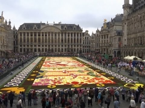 Raw: Flower Carpet Laid in Brussel's Grand Place