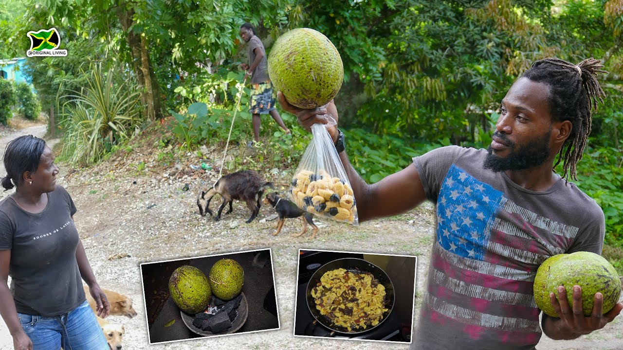 Living The Country Life - Breadfruit & Ackee Pick And Cook