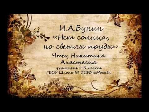 Изображение предпросмотра прочтения – АнастасияНикитина читает произведение «Нет солнца, но светлы пруды...» И.А.Бунина
