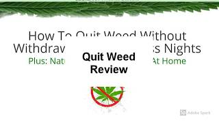 Quit Weed Review | Is Quit Weed Good?