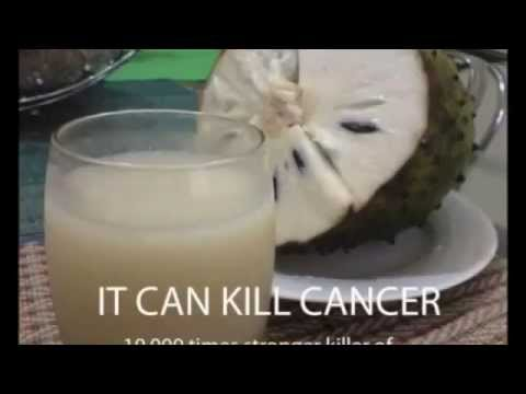 Soursop, Graviola, Guyabano - The miracle cure for cancer