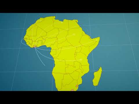 AFI launches its Africa Regional Office in Abidjan