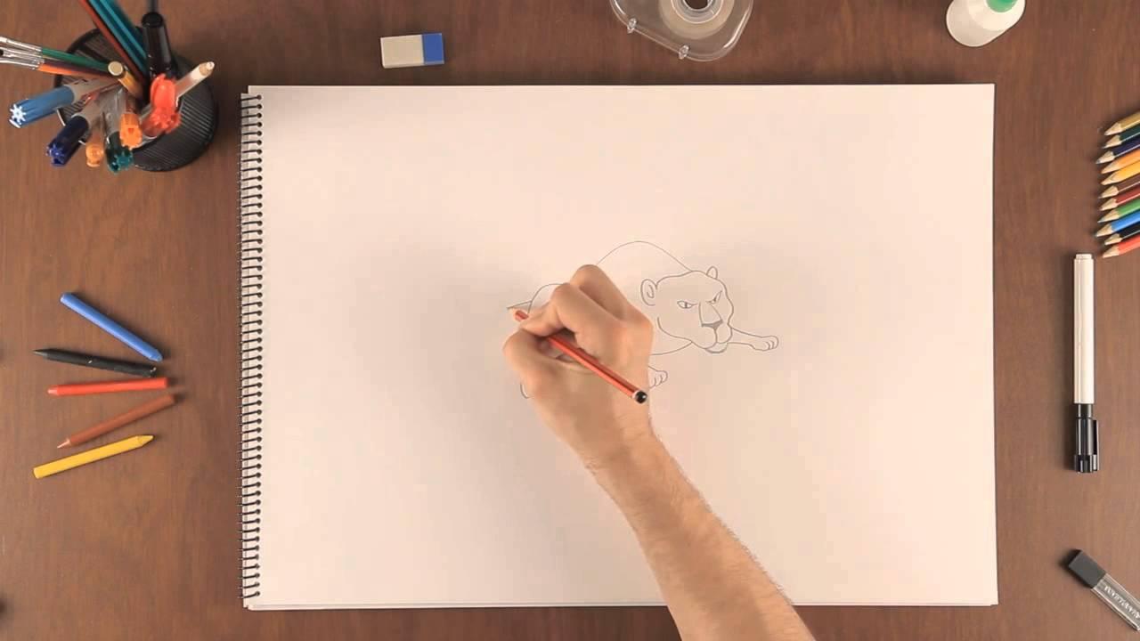 Cómo Dibujar Un Jaguar Aprende A Dibujar Como Un Profesional