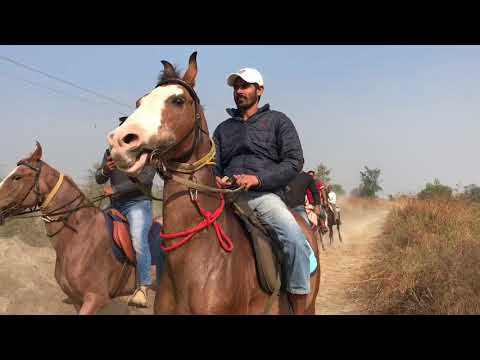 Long riders trail ride at Patiala
