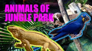 Miracle trip to Las Águilas Jungle Park Full, Tenerife, Canary Island, 2014 / Тенерефе