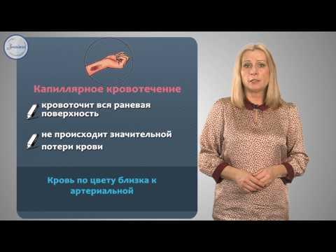 Биология 8 Первая помощь при кровотечениях
