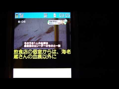 NTT DoCoMo N02A Software Unlocked 1 SEG TV