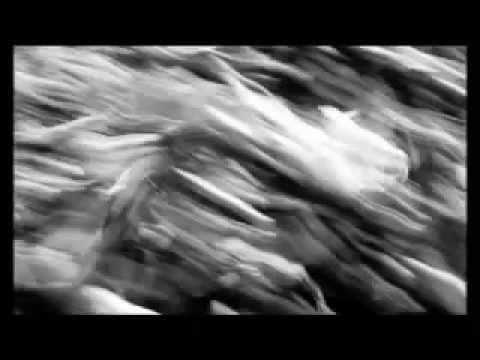 LINEA77 ft. SUBSONICA - 66 (Diabolus in musica)