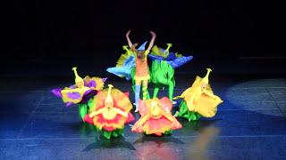 Flowers In My Head Menada Group Theatre Of Dance Dance Of Europe