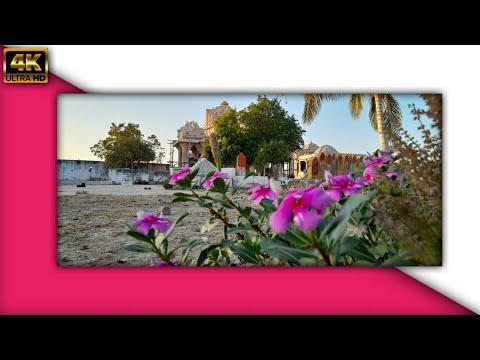 Download Suraj Dhima Dhima Ugo   New Modpir Dada Status 2021