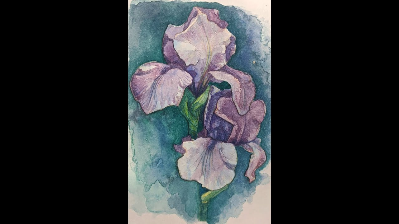 Free Introduction To Watercolor Painting Spring Iris.  Class 1