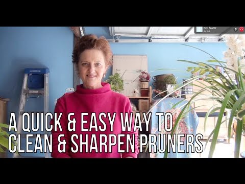 A Quick & Easy Way To Clean & Sharpen Pruners