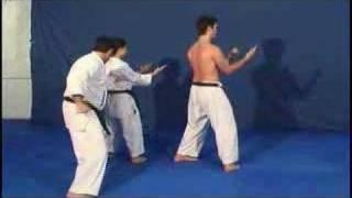 Sanchin Kata (Kitae) - Uechi Ryu
