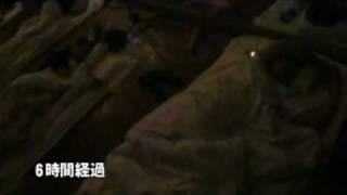 自分用にニコニコよりhttp://www.nicovideo.jp/watch/sm6840012.