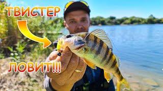 И окунь и щука всё на МИКРОДЖИГ. Хорошая рыбалка на реке осенью.