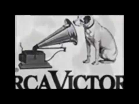 History of Pitbulls