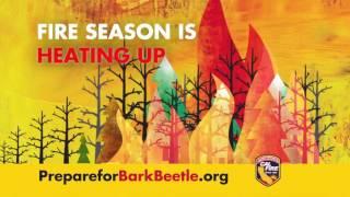 Remove Dead Trees -  30 Second PSA