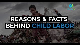 Child Labour - Reasons & facts behind it - Branding PK