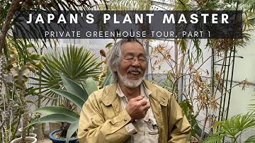 Kunzo, Japan's Plant Master; Part 1   Private Greenhouse Nursery Tour of Rare Houseplants   Ep 75