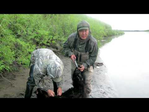 кодировка на охота и рыбалка