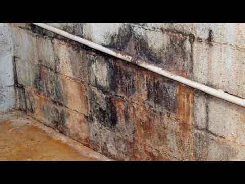 Wet Basements | Toledo, OH – Toledo Basement Repair