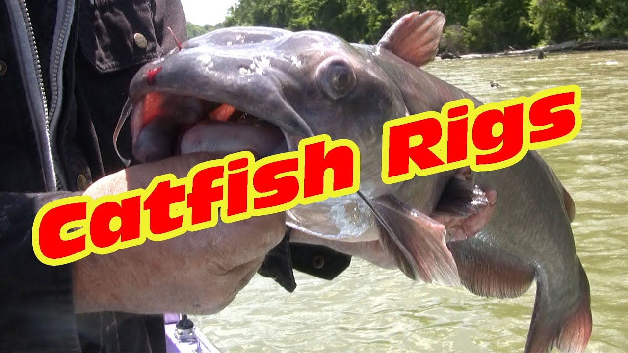 Catfishing rigs two surefire rigs that catch catfish youtube for Best time to fish for catfish