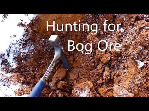 Hunting Bog Ore with Cody