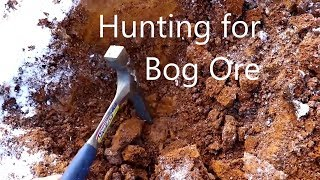 Hunting Bog Ore with Cody'sLab!