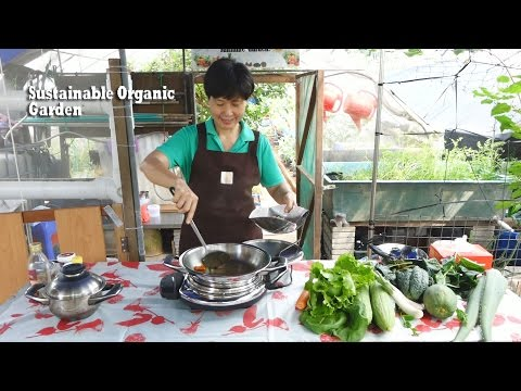 Sustainable Organic Garden with voice-over - Organic Agriculture in Singapore