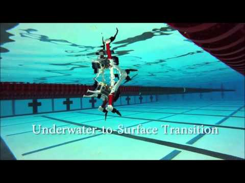 Loon Copter: The Air + Surface + Underwater Drone (winner of 2016 Drones for Good Competition)