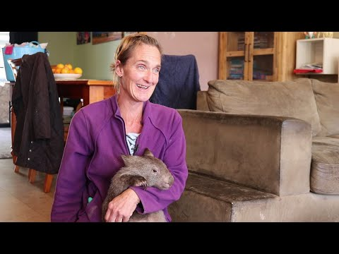 Wombat Woman - a day in the life