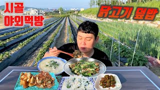 시골먹방) 밭에서 먹는 닭고기 덮밥