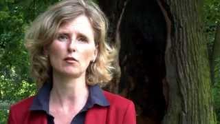 Zum Video: Prävention und Handling gegen Mobbing und Burnout