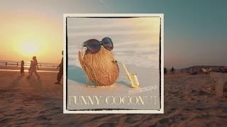 Syntheticsax - Funny Coconut (GOA Arambol beach sunset)