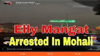 Elly Mangat Arrested by Punjab Police in Mohali 88 Sector | Live Elly Mangat