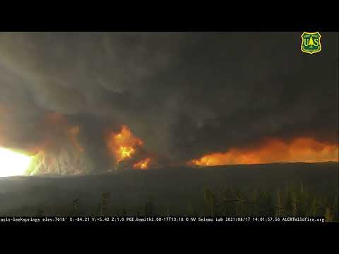 Extreme fire behavior (Caldor Fire) recorded from Leek Springs Noon to 4 PM, Aug. 17th, 2021