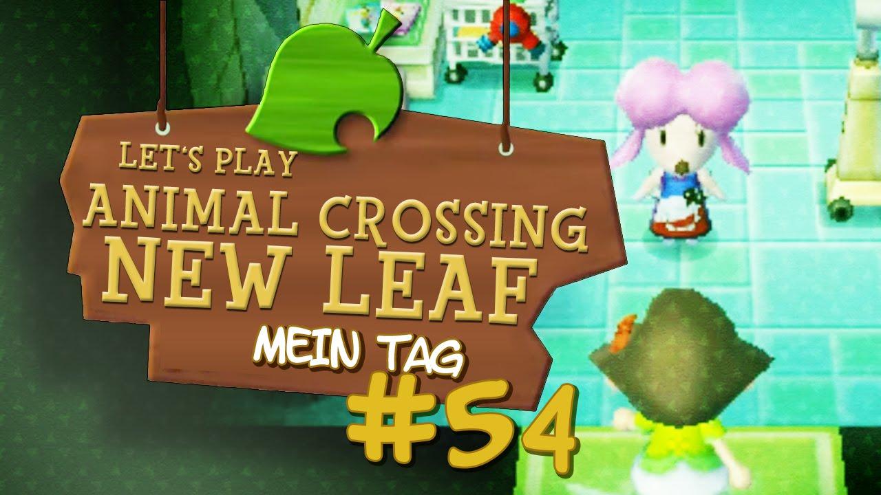 Animal Crossing New Leaf 54 Shampudel