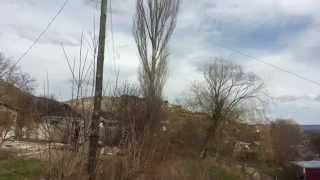 Спил деревьев(, 2015-02-27T18:02:50.000Z)