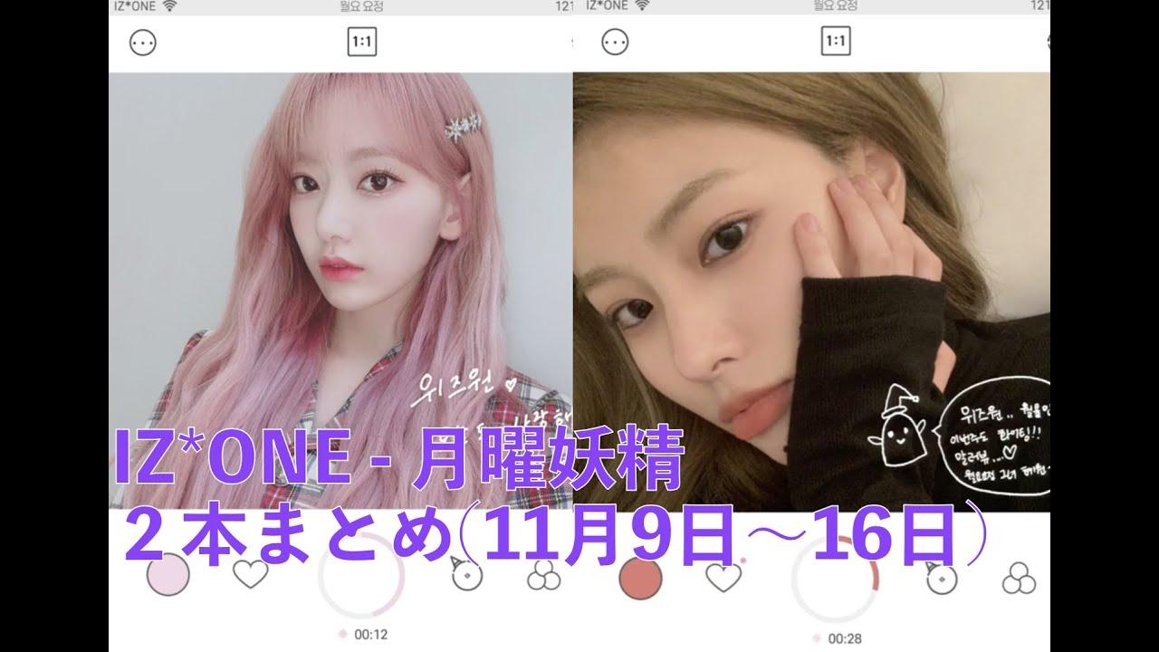 [日本語字幕] IZONE - 月曜妖精 2本まとめ (11月9日~11月16日)