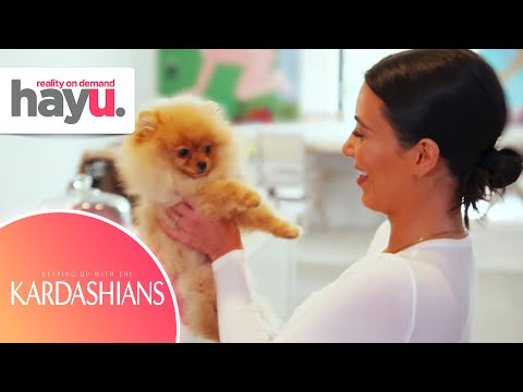 Kardashians LOVE Dogs! | Seasons 1-18 | Keeping Up With The Kardashians