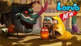 Larva Terbaru New Season  | EpisodesStrange Berries and Wild Word 1 | Larva 2018 Full Movie