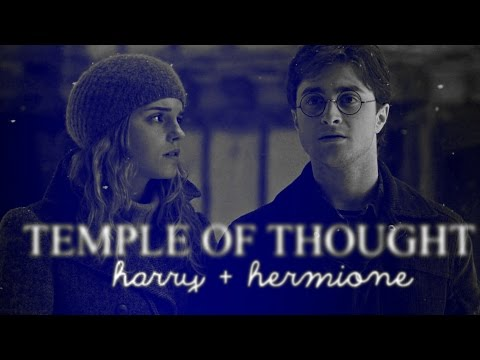 Harry & Hermione   Temple of thought