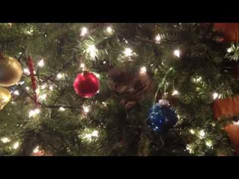 Hope At Christmas.Hope At Christmas