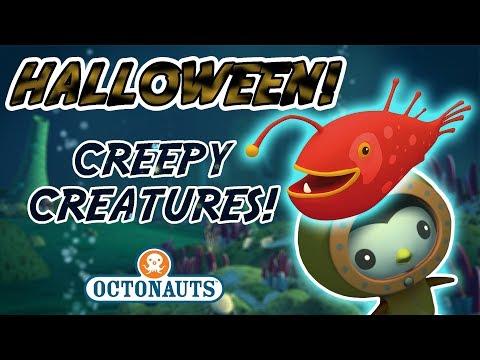 Octonauts - It's Halloween | Super Creepy Creatures!