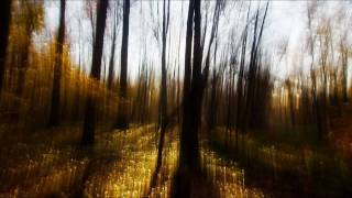 Play Rush (Super 8 VS. Orkidea remix)