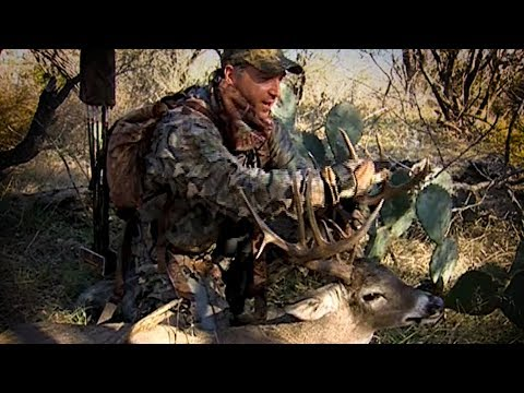 Old School: Tom Miranda Bowhunt's A Texas 14pt Buck