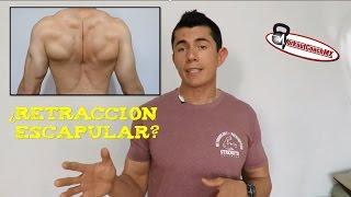 RETRACCIÓN ESCAPULAR (Mejora postura y la salud del hombro)